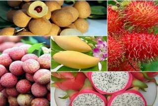 Vietnamese agricultural products in