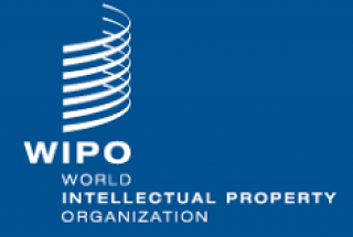 Regional Online Seminar - IP Offices and Use of WIPO's Alternative Dispute Resolution Services.